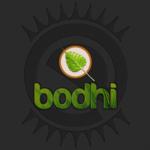 Bodhi Linux 2.2.0 sur Raspberry Pi