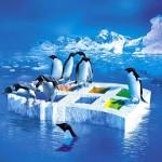 Comprendre l'environnement Linux